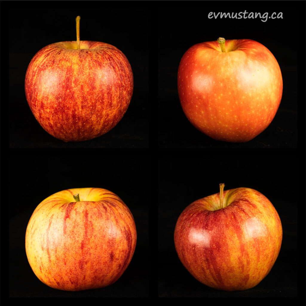 image of four royal gala apples in four squares
