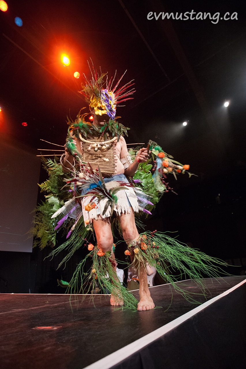 Wearable Art and Runway Challenge 2015