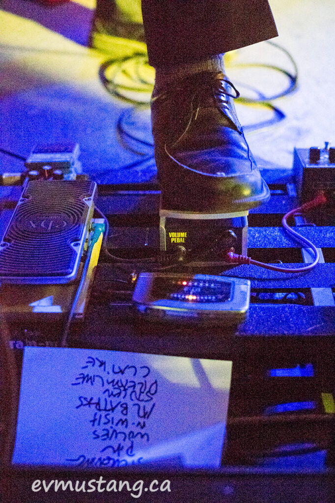 image of the rheostatics at the horseshoe tavern 2017, tielli shoe, set list